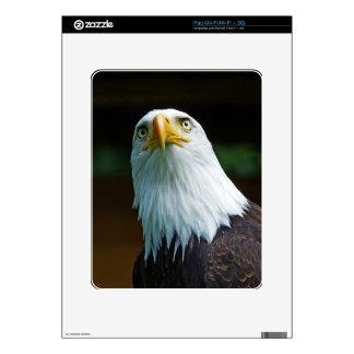 Cabeza americana de Eagle calvo iPad Calcomanía