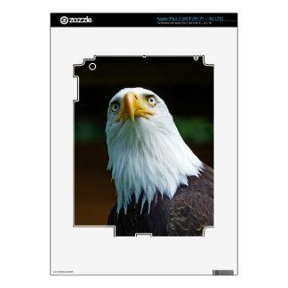 Cabeza americana de Eagle calvo Pegatinas Skins Para iPad 3