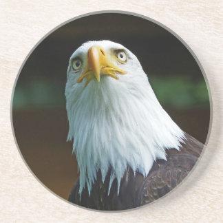 Cabeza americana de Eagle calvo Posavaso Para Bebida
