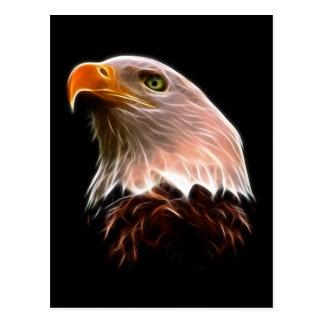 Cabeza americana de Eagle calvo Tarjetas Postales