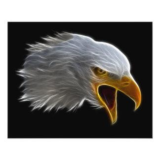"""Cabeza americana de griterío de Eagle calvo Folleto 4.5"""" X 5.6"""""""