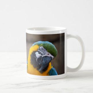 cabeza azul del macaw del loro del oro inclinada taza básica blanca