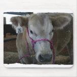 Cabeza blanca de la vaca tirada en la feria del co tapetes de ratones