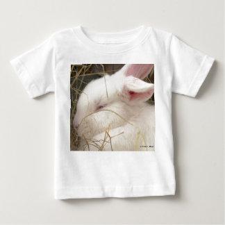 Cabeza blanca del conejo del enano del netherland playera
