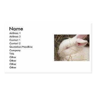 Cabeza blanca del conejo del enano del netherland  tarjetas de visita