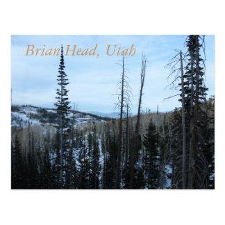 Cabeza de Brian Utah Tarjeta Postal