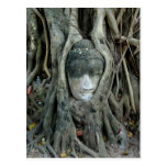 Cabeza de Buda Tarjetas Postales