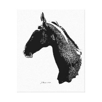 Cabeza de caballo de Akhal-Teke Impresion De Lienzo