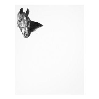 """Cabeza de caballo del grafito folleto 8.5"""" x 11"""""""