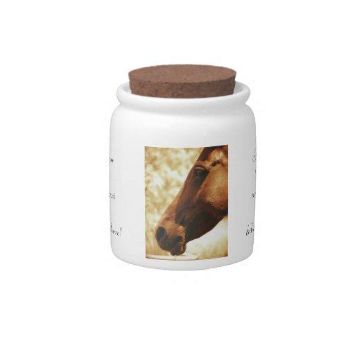 Cabeza de caballo en el retrato animal de la foto  plato para caramelo