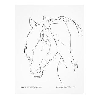 """Cabeza de caballo folleto 8.5"""" x 11"""""""