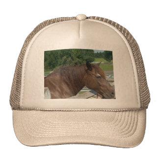 Cabeza de caballo gorra