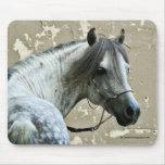Cabeza de caballo gris alfombrillas de raton