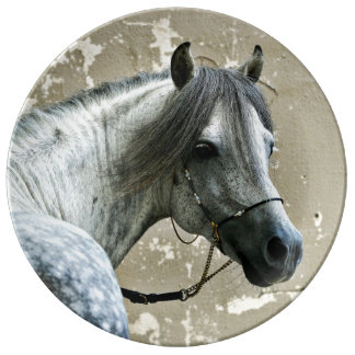 Cabeza de caballo gris plato de cerámica