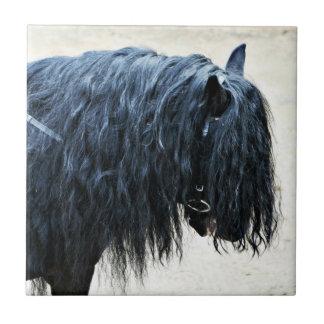 Cabeza de caballo negra azulejos