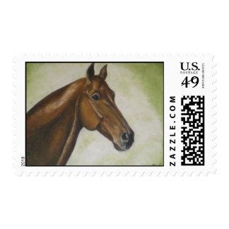 cabeza de caballo envio
