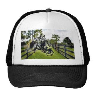 cabeza de caballo sobre caballo en la cerca gorra