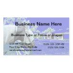 cabeza de caballo sobre el azul de la cerca colore tarjeta de negocio