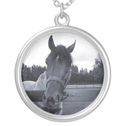 Cabeza de caballo sobre la cabeza de la cerca en colgante redondo