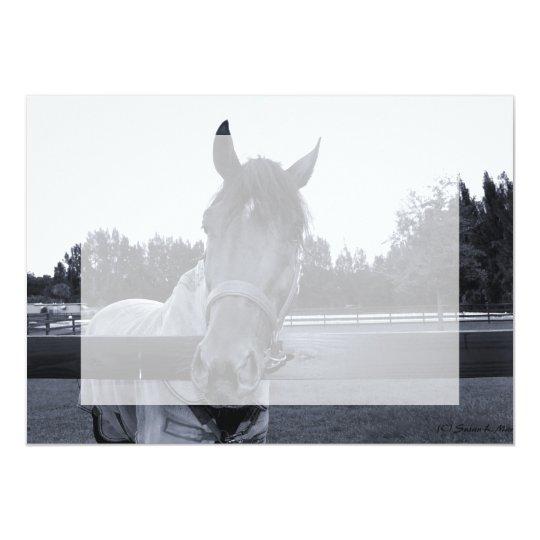"""Cabeza de caballo sobre la cabeza de la cerca en invitación 5"""" x 7"""""""