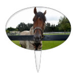Cabeza de caballo sobre la cabeza de la cerca ence palillos de tarta