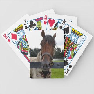 Cabeza de caballo sobre la cabeza de la cerca ence barajas de cartas