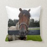Cabeza de caballo sobre la cabeza de la cerca ence almohadas