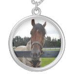 Cabeza de caballo sobre la cabeza de la cerca ence collares