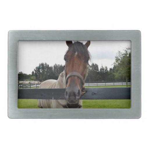 Cabeza de caballo sobre la cabeza de la cerca ence hebilla de cinturon rectangular