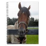 Cabeza de caballo sobre la cabeza de la cerca ence libros de apuntes con espiral