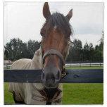 Cabeza de caballo sobre la cabeza de la cerca ence servilleta de papel