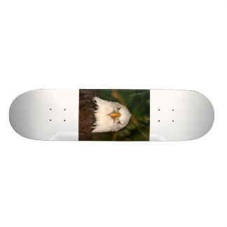 Cabeza de Eagle calvo en diseño de la fotografía Tablas De Skate