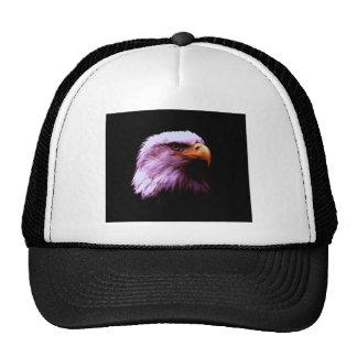 Cabeza de Eagle calvo Gorras De Camionero