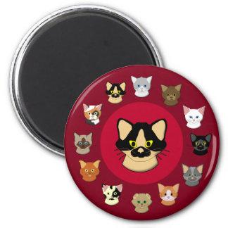 Cabeza de gato imán rojo