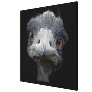 Cabeza de la avestruz lienzo envuelto para galerías