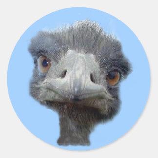 Cabeza de la avestruz pegatina redonda