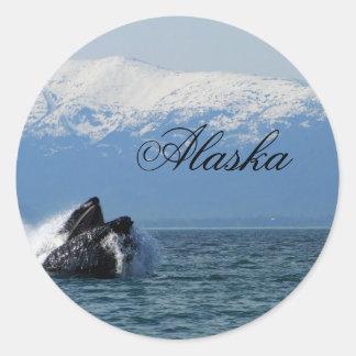 Cabeza de la ballena jorobada; Alaska Pegatina Redonda