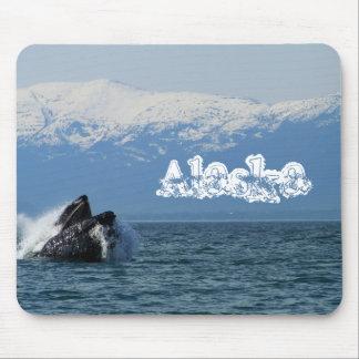 Cabeza de la ballena jorobada; Alaska Tapetes De Ratón