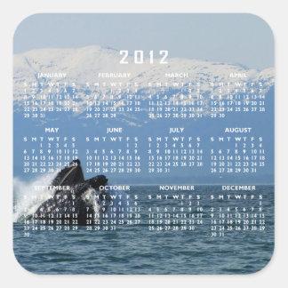 Cabeza de la ballena jorobada; Calendario 2012 Pegatina Cuadrada