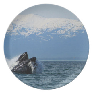 Cabeza de la ballena jorobada plato