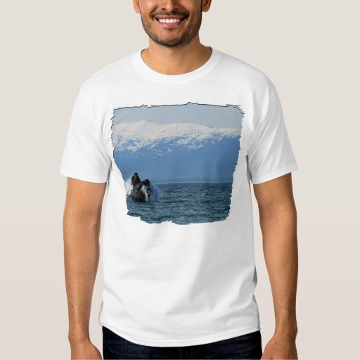 Cabeza de la ballena jorobada poleras