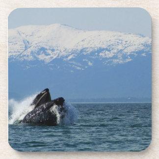 Cabeza de la ballena jorobada posavaso