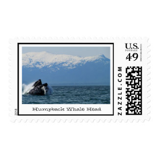 Cabeza de la ballena jorobada sellos