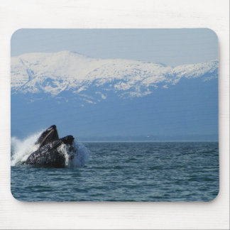 Cabeza de la ballena jorobada alfombrilla de ratones
