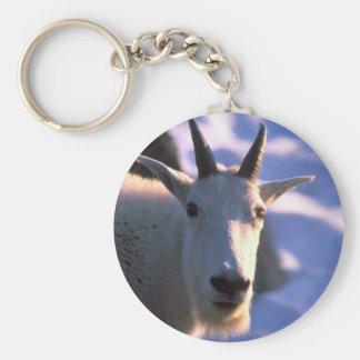 Cabeza de la cabra de montaña rocosa llavero redondo tipo pin