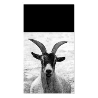 Cabeza de la cabra tarjeta personal