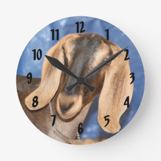 Cabeza de la gama de Nubian contra azul Reloj Redondo Mediano