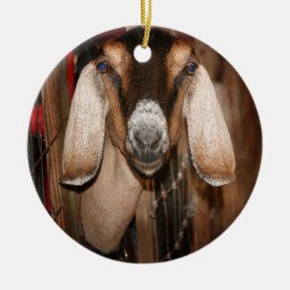 Cabeza de la gama de Nubian en salir de la puerta Ornamento Para Reyes Magos