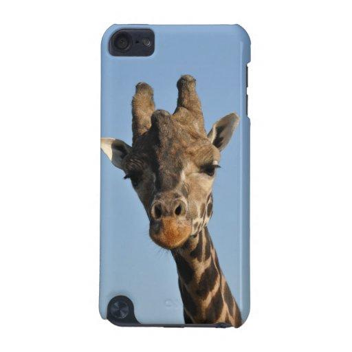 Cabeza de la jirafa carcasa para iPod touch 5G