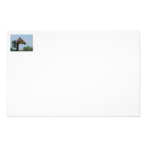 Cabeza de la jirafa contra imagen de la fotografía papeleria de diseño